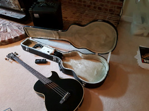 Acoustic electric Bass and amp