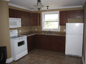 Recently renovated 1 bedroom upper in Central City