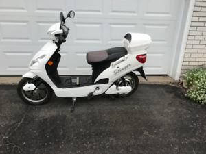 Electric Scooter (STINGER)