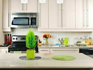 Kitchen Granite Marble Countertops ☀ under $1999 ☀ 647.812.0384