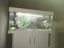 White painted fish tank just over 3 foot all good and working fine