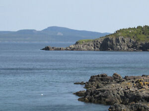 BACON COVE RD, AWESOME OCEAN VIEWS..BACON COVE.. St. John's Newfoundland image 19