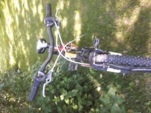 Vélo de montagne miele.
