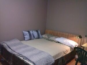FURNISHED BACHELORS UNIT FOR RENT IN PORT HOPE Peterborough Peterborough Area image 1