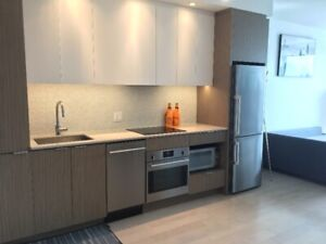 Arthaus condo downtown furnished or empty May luxury 17th floor