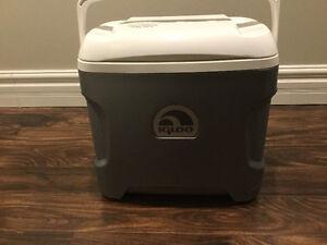 Igloo iceless electric cooler