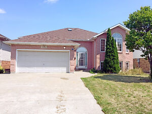 RAISED RANCH FOR LEASE IN SOUTH WINDSOR