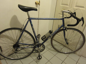 Made in Italy 12spd Bianchi roadbike, large butted frame, helmet