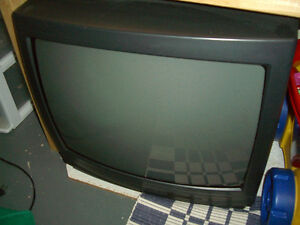 "19"" Magnasonic TV - FREE"