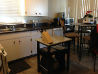 Available June 1, 3 Bedroom Suite in Fourplex For Rent