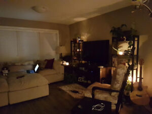 Seeking roommate to share my cozy SK side townhouse