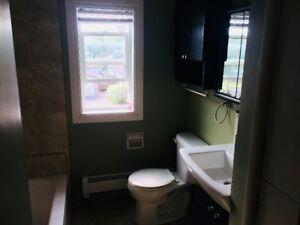 1 Bedroom apartment in Dauphin