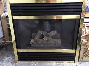 For Sale: Insta-Flame propane fireplace insert