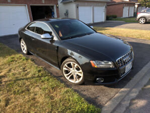 Audi S5 - High Performance V8 Coupe