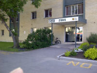 Newdale Apartments 1 bedroom available Close to U of M