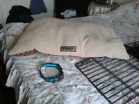 dog bed and acceseries for sale