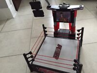 W W E wrestling ring money in the bank