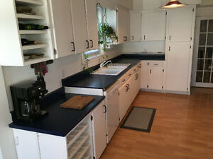3 Piece Kitchen Countertop with dbl sink, faucets & Garburator