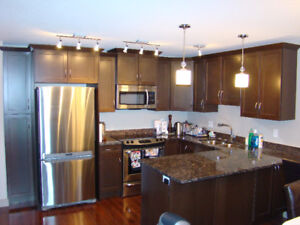 Luxury fully furnished two bedroom condo in Willowgrove $1850