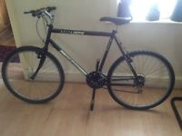 mens or boys mountain bike