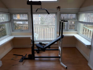 Used Workout Bench -  Northern Lights with Attachments $200