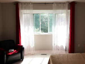 Big furnished master bedroom with walk-in closet near mall, skyt
