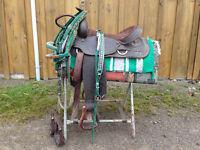 amazing Western Saddle package