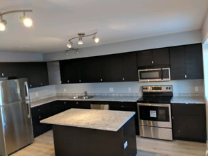 2 Bedroom 2.5 Bath Condo for rent August 1