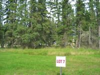 $44,900 - One of the Best Priced Lots at Candle Lake!