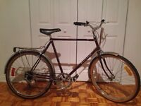 Vintage Raleigh 6 Speed Cruiser