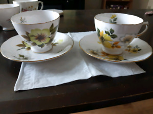 Royal Vale Bone China Tea Cup and Saucer Made in England