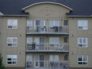 Fully Furnished Executive condo for rent Effective July 10th