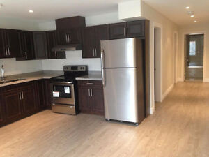 Brand new 2 bed, 1 bath Metro town area