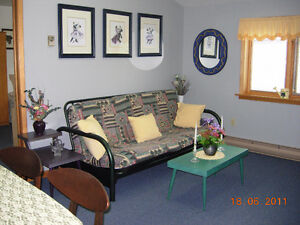Vacation rental apartment - available last two weeks of August