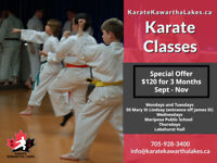 Karate Classes in Kawartha Lakes - All ages