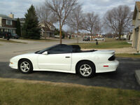 1995 Pontiac Trans Am Convertible