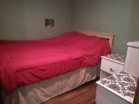 DOWNTOWN-1 BEDROOM BASEMENT SUITE AVAILABLE FOR RENT TODAY $1350