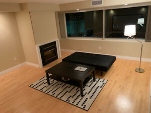 Modern 1-Bedroom + Den Apartment in Downtown + FREE WiFi