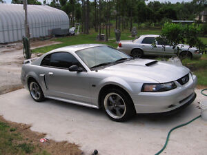 Wanted 1999 Ford Mustang GT Coupe (2 door)
