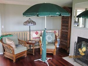 5 ft. Beach Umbrella with carrying case.