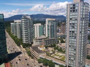 Great Downtown Views, Furnished 1 BDRM Close to Robson, Stanley