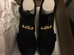 Lebron zoom soldier 10. Game 7 NBA finals. Nike ID size 11.5
