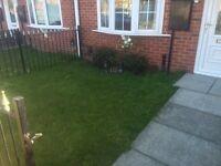 Colin's Garden Service