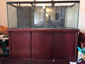 210 gallon aquarium with stand & canopy