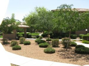 PHOENIX  ( CHANDLER ) ARIZONA CLEAN AND FRESH VACATION RENTAL