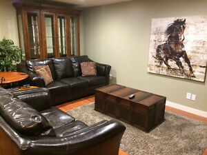 Executive furnished suite available May 1