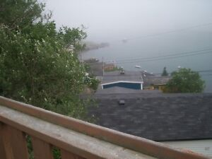 RENTER'S MARKET!! Awesome Views in the Outer Battery St. John's Newfoundland image 4