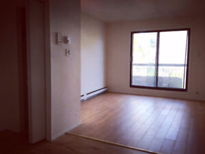 Renovated 31/2 near Champlain Mall -available for Oct, 2017