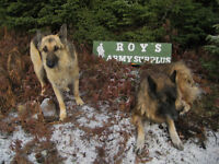 ROYS ARMY SURPLUS AND COLLECTABLES = 506-633-3003