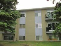2 Bedroom $99 Security Deposit $875 Rent Close to Hospital